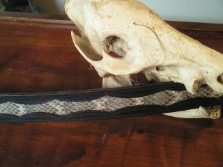 Arizona Western Diamondback Rattler Inlay Belt